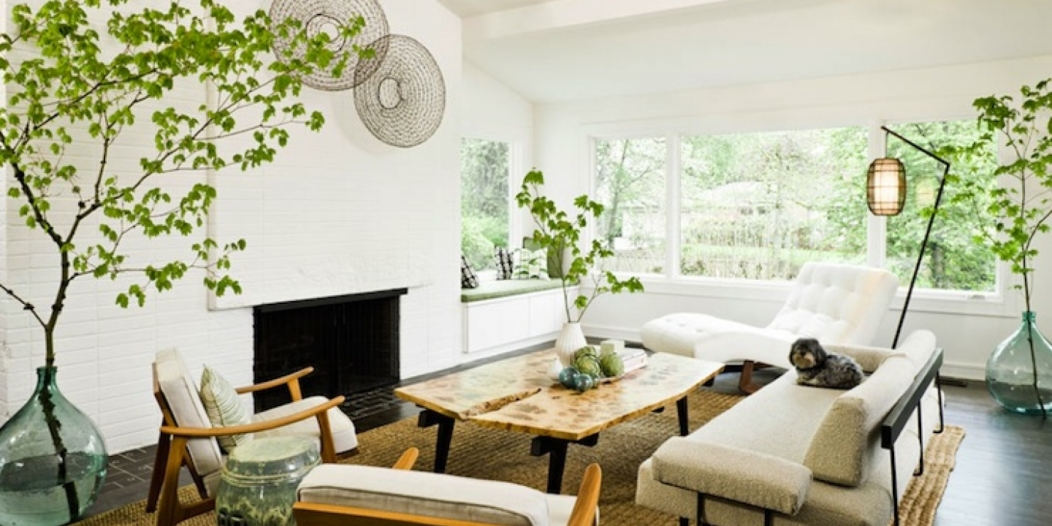 decorate-your-home-with-indoor-plants-14